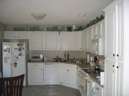 My Kitchen Cabinet What Ideas Do You Have On What To Put On Top Of Kitchen Cabinets