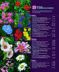 Garden Plants Names And Pictures by 25 Robust Summer Bloomers Fine Gardening