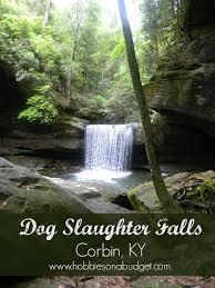 Kentucky waterfalls images The best central kentucky waterfalls jpg