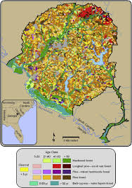 Map Of Savannah Ga Stand Type And Age Class Map Of The Savannah River Site Gray