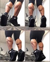 Guys Calf - seated calf raises machine for workout seated calf raise
