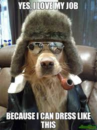 Yes This Is Dog Meme - yes i love my job because i can dress like this meme overly