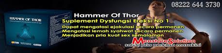 hammer of thor obat kuat pembesar penis pemanjang alat vital pria