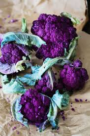 best 25 purple vegetables ideas on pinterest purple food