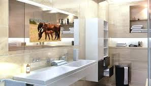 Mirror Tv Bathroom Bathroom Mirror Tv Cost On Ideas Designs Mirror Design