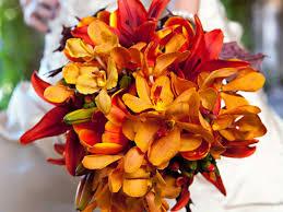 matrimonio fiori fiori e addobbi per un matrimonio in inverno stagione pi禮 fredda