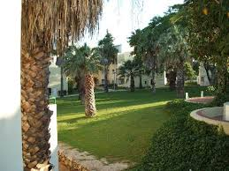 gardens of oasis village viewed from our studio balcony picture