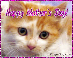 mothers day stuff s day kitten glitter graphic greeting comment meme or gif