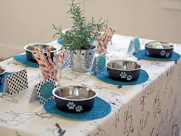 how to host the perfect party for your pets hgtv