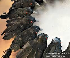 black feather halloween wreath create a halloween wreath with creepy crows celebrate u0026 decorate
