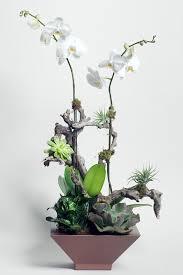 orchid flower arrangements orchid flower arrangements mcfarlane douglass