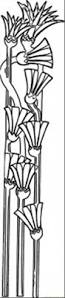 flower of papyrus coloring page free egypt coloring pages