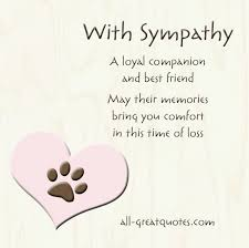 How To Comfort A Friend With Sympathy A Loyal Companion And Best Friend May Their Memories
