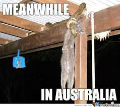 Funny Australia Day Memes - just a normal day in australia by kickassia meme center