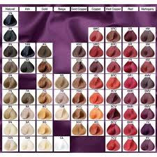 ion haircolor pucs best 25 ion hair color chart ideas on pinterest ion hair colors