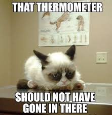 Memes Of Grumpy Cat - grumpy cat meme grumpy cat pictures and angry cat meme