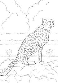 Cheetah Too Scares Coloring Pages Download Free Vonsurroquen Me Coloring Scares
