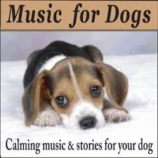 dog photo albums pets while you are by bradley joseph on