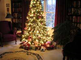 Christmas Tree Decorating Ideas Pictures 2011 Christmas Tree In Home Christmas Lights Decoration