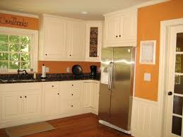 Oak Kitchen Cabinet Makeover Amazing Orange Wood Kitchen Cabinets Pictures Design Inspiration