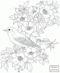 coloring pages for kids state birds birds cardinal and peony