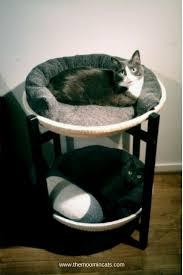 simple ideas for cat beds ikea hackers ikea hackers