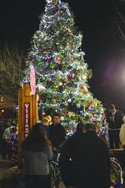 the tree lighting the tim wood