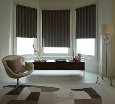 Light Blocking Blinds Blackout Roller Shades Patio Shades Houston