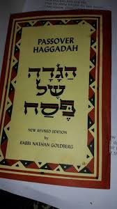 reform passover haggadah the haggadah southend and district reform synagogue