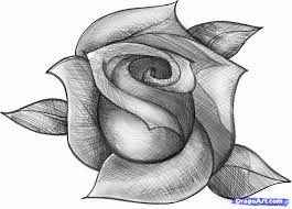 beautiful pencil sketches of roses pencil art drawing