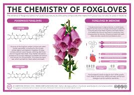 not poison in n d compound interest the chemistry of foxgloves poison medicine
