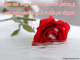 imagenes de amor con rosas animadas imágenes de rosas con frases bonitas con gif imagenes de amor con