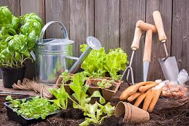 beginner u0027s guide to straw bale gardening