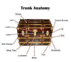 steamer trunk the traveller u0027s companion