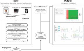 ehdviz clinical dashboard development using open source