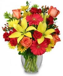 same day floral delivery same day floral delivery in hernando ms by butterflies florist