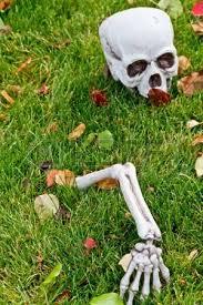 Halloween Decorations Skeleton Bones by Halloween Skeleton Bones And Tombstone Decorations In Yard Stock
