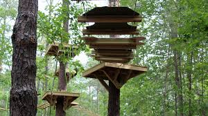 treerunner adventure raleigh treetop adventure park