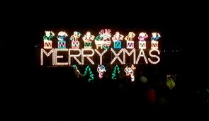 the switch on of christmas lights in cornwall salty songs