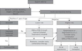 the challenges in paediatric pulmonary arterial hypertension