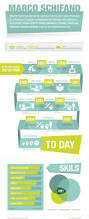 Experienced Graphic Designer Resume 52 Best Infographics Cv U0027s Images On Pinterest Cv Design Resume