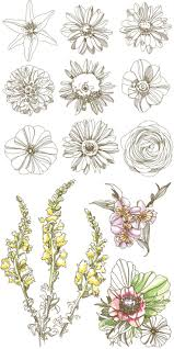 the 25 best flower outline ideas on pinterest branch drawing
