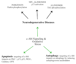 ijms free full text parkinson u0027s disease a complex interplay