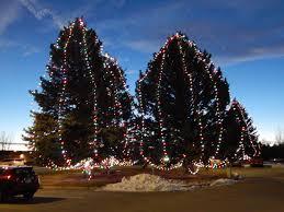Christmas Tree Shops Salem Nh - christmas christmas tree shop hours cheap x cm baby pink blush