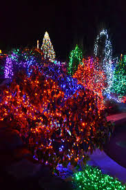 Zoo Lights Oregon by The Outlaw Gardener On The Seventh Day Of Christmas Zoo Lights