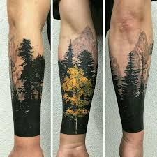 like the yellow contrast here maybe symbolizing aspen trees