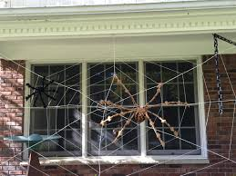 free images architecture glass web decoration halloween