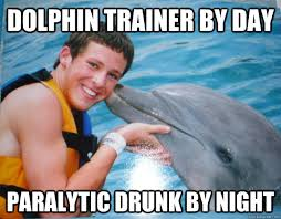Trainer Meme - 47 most funny dolphin meme pictures and images that will make you laugh