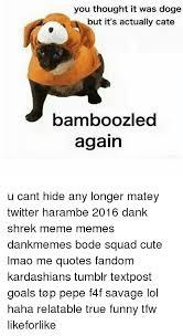 Doge Meme Tumblr - 25 best memes about kardashians tumblr kardashians tumblr memes