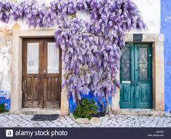 purple wisteria stock photos u0026 purple wisteria stock images alamy
